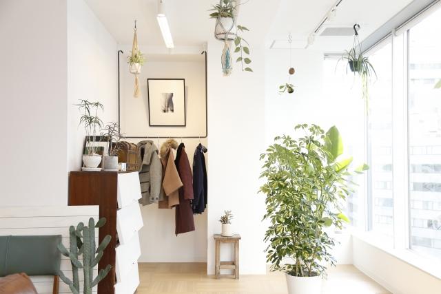 植物とおしゃれなルームPhoto by ACphoto
