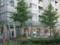 修学院マンションの緑色のライン(20091103撮影)