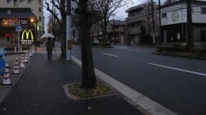 No.06 白川通 マクドナルド北白川店前(20101214)