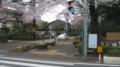 No.04 (国立市)一橋大学南側路上:西向き(2011/04/09撮影)