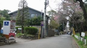 No.07 (国立市)一橋大学南側路上:西向き(2011/04/09撮影)