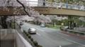 No.15 (国立市)都道146号線陸橋:南向き(2011/04/09撮影)