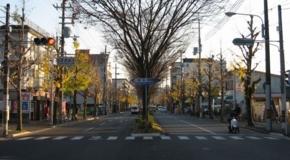 2010/12/04撮影