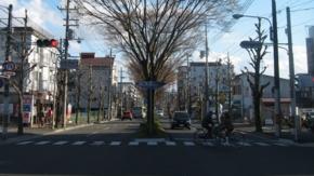 2011/03/27撮影