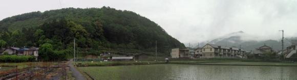 20110528撮影