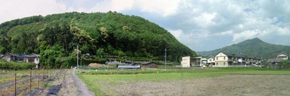 20110514撮影