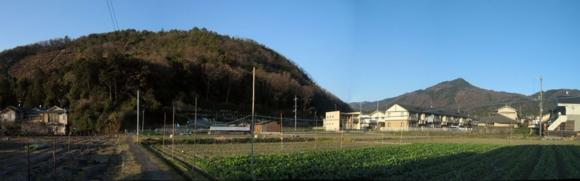 20110313撮影