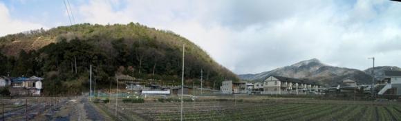 20110110撮影