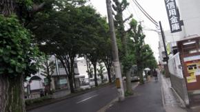 20110620撮影
