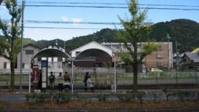 20091103撮影
