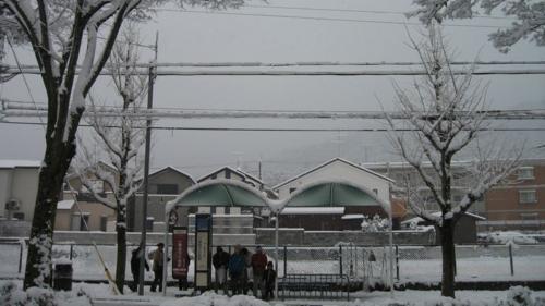 20101231撮影