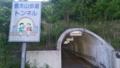 信夫山歩道トンネル 世田谷草野球ロスヒターノス