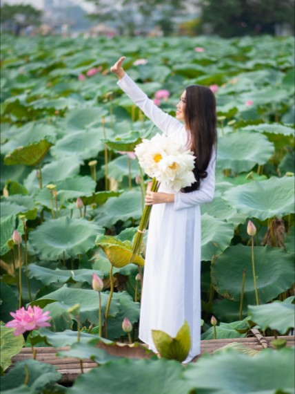 f:id:lotus0879:20200524113130j:plain