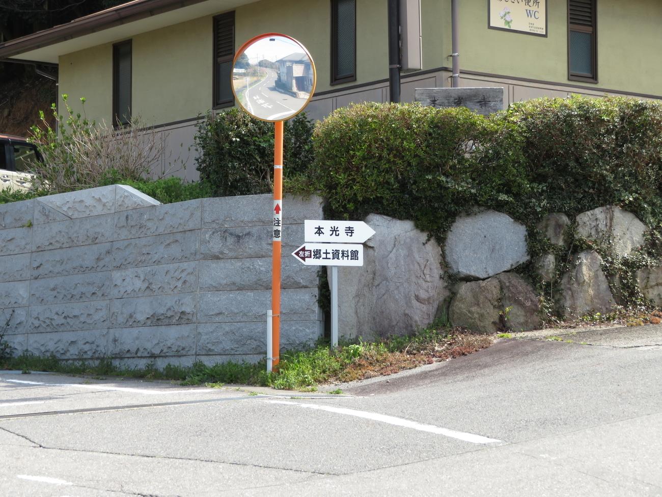 f:id:lotushasu17:20190407104527j:plain