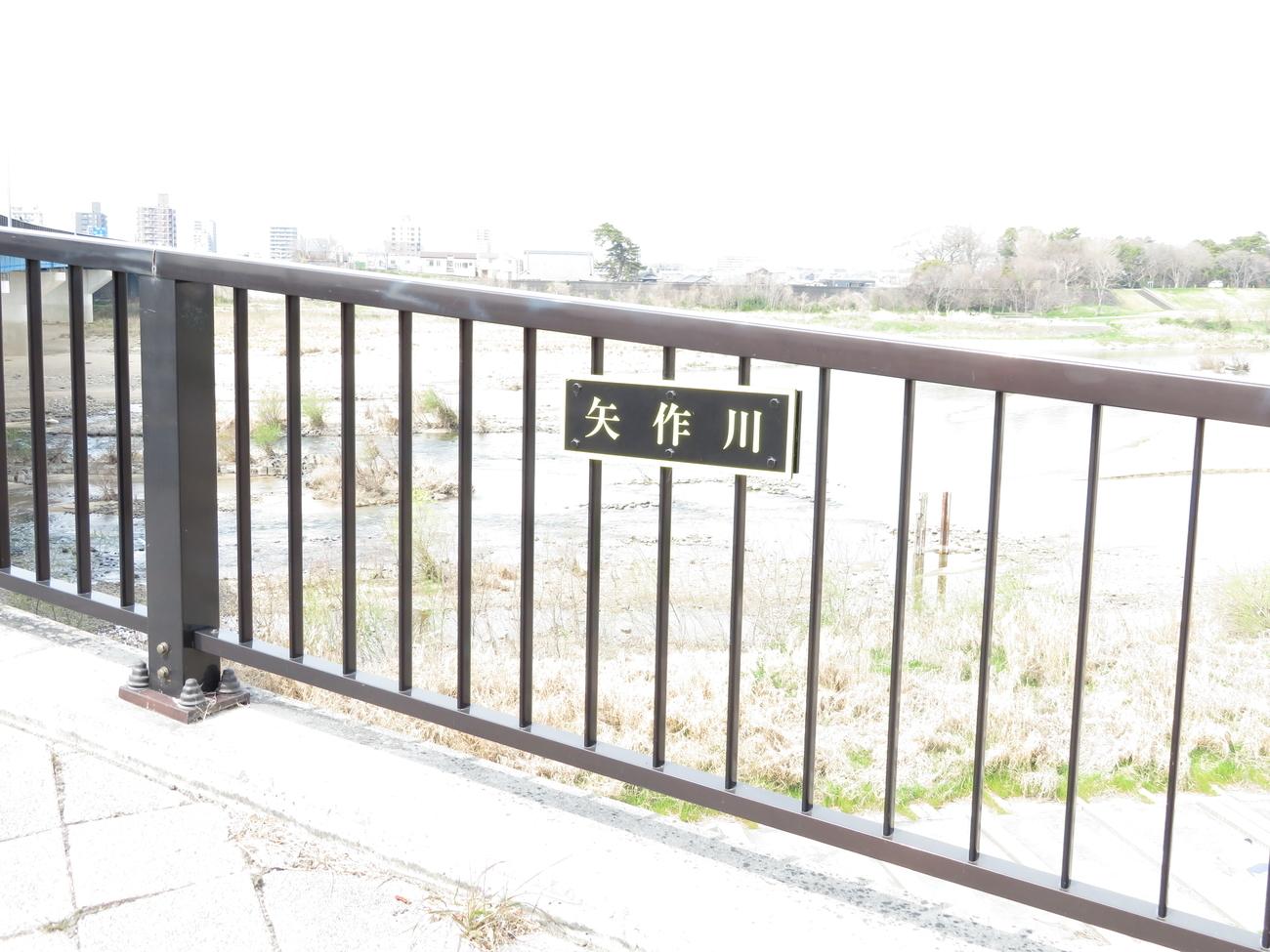 f:id:lotushasu17:20190407110311j:plain