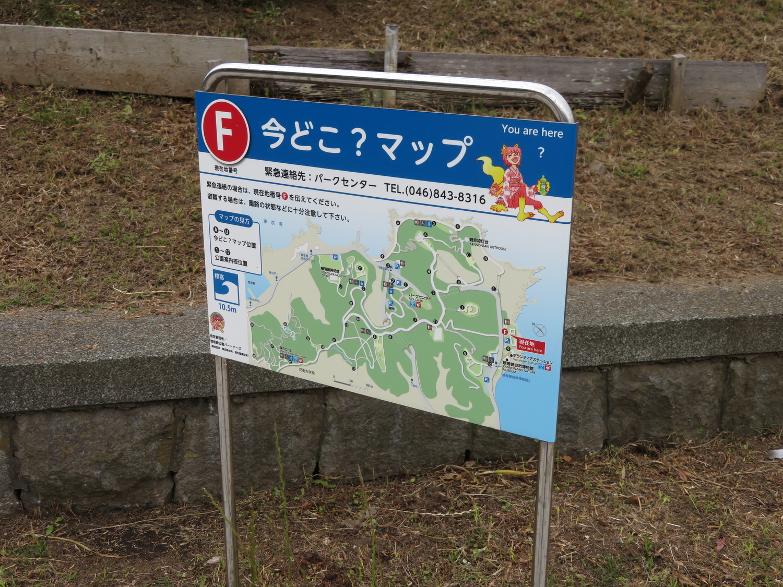 f:id:lotushasu17:20210527184159j:plain