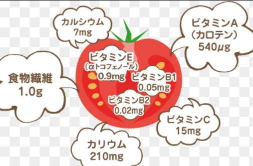 トマトの栄養素