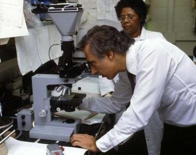 高い抗酸化作用により、がん予防の効果が期待されている