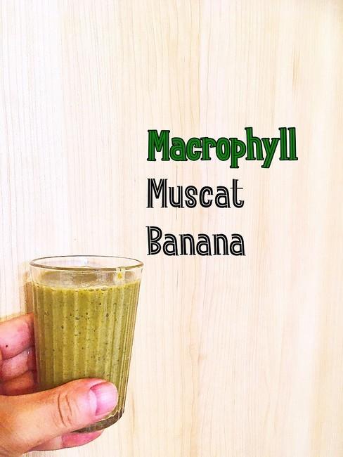 肌の代謝促進ビタミンB群と、AGEを排泄する食物繊維がたっぷり、大葉のスムージー
