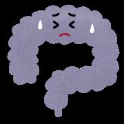 腸内環境の悪化による、皮脂の増加と肌の代謝の低下