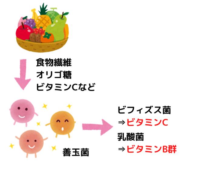腸内の善玉菌に、ビタミンB群を作らせるスムージー