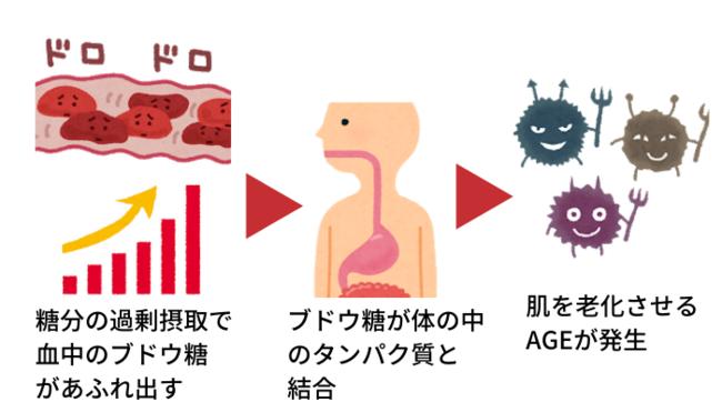 体内では、糖の過剰摂取によって作られる