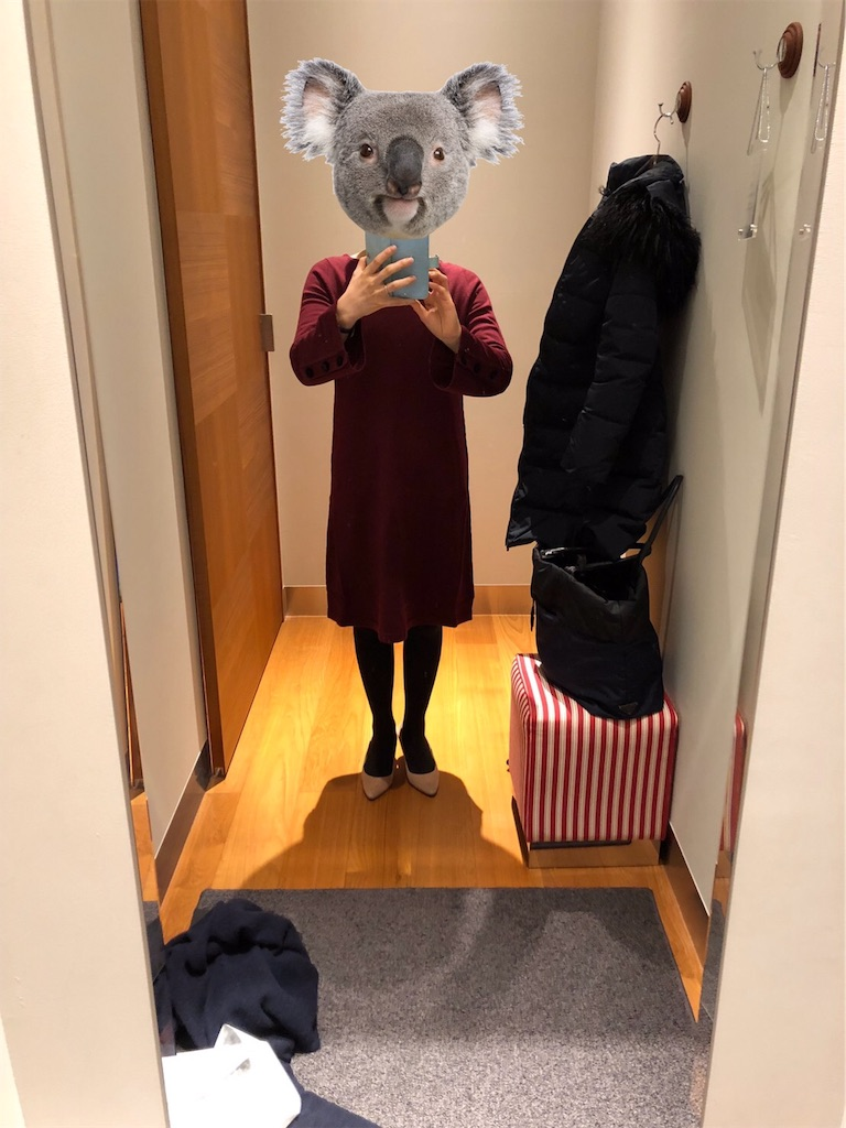 f:id:lovecapybara:20190206124327j:image