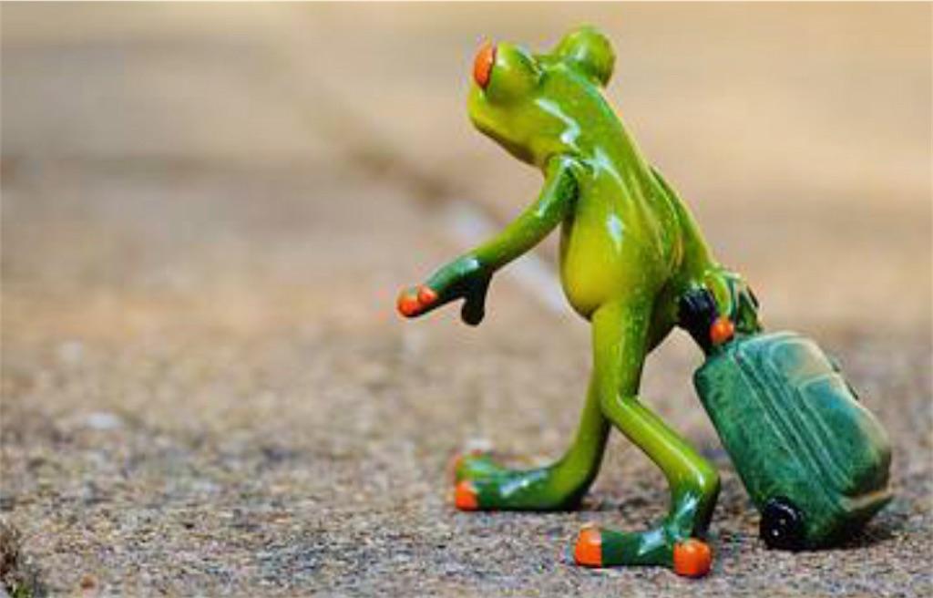 f:id:lovecapybara:20210207160110j:image