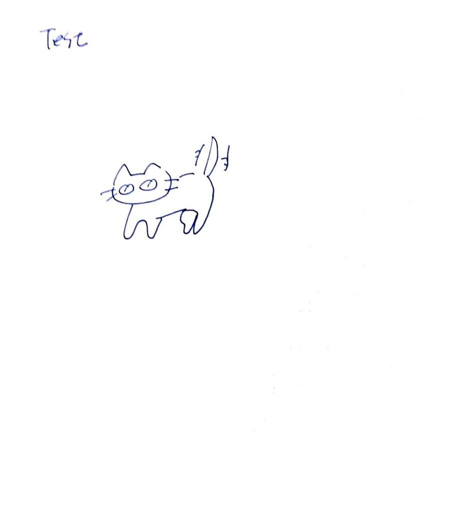 f:id:lovecats:20170605153625j:plain