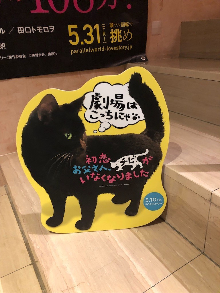 f:id:lovecats:20190523215505j:image