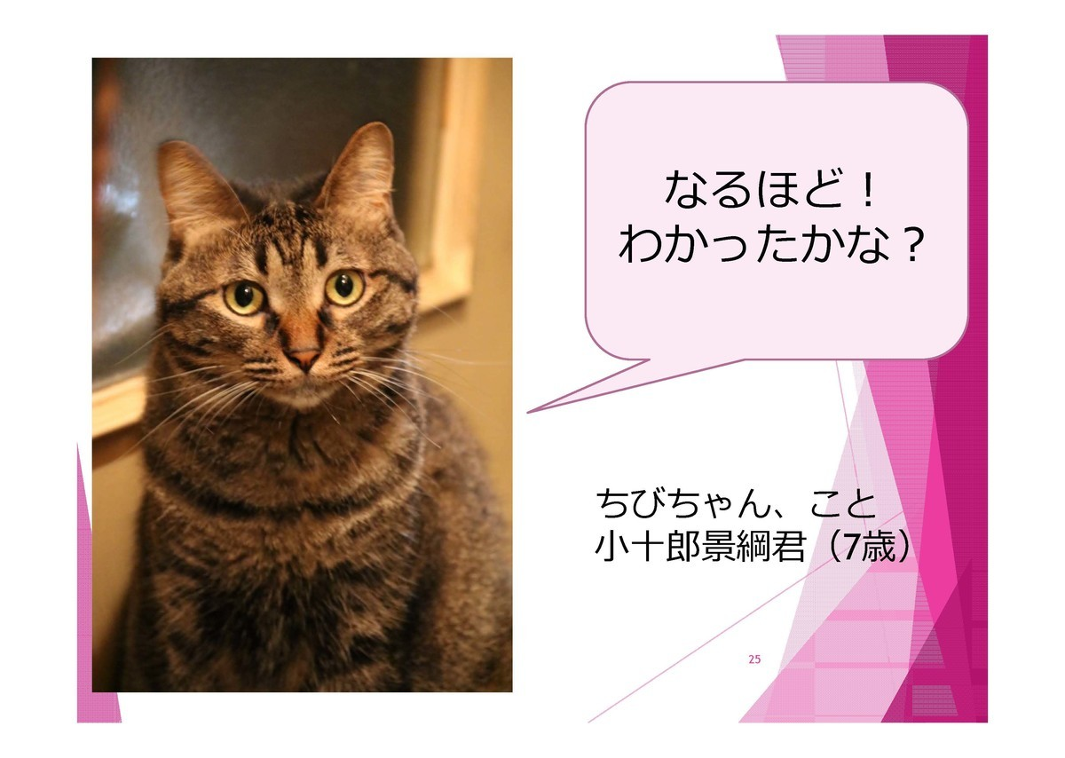 f:id:lovecats:20191125160642j:plain