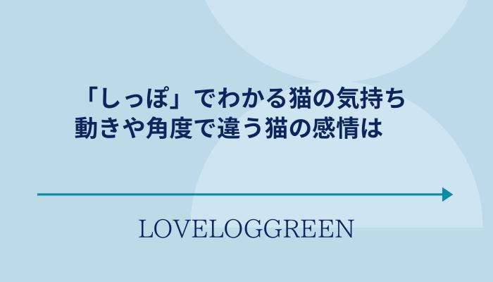 f:id:loveloggreen:20210728140654p:plain
