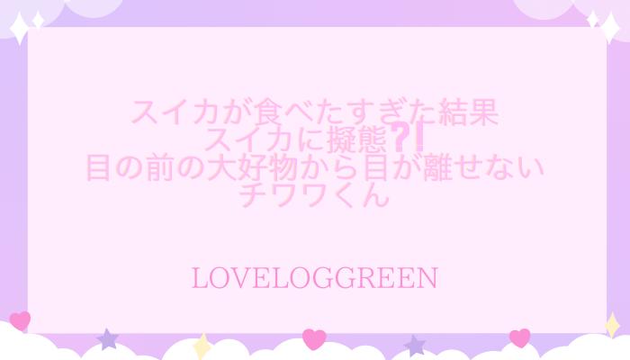 f:id:loveloggreen:20210803060655p:plain