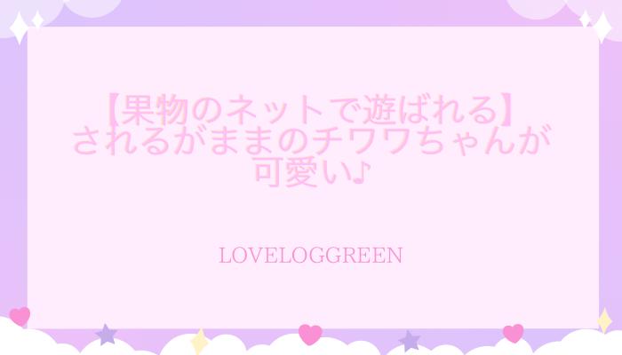 f:id:loveloggreen:20210814130156p:plain