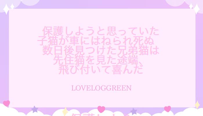 f:id:loveloggreen:20210815101842p:plain