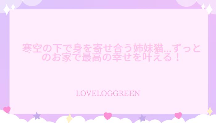 f:id:loveloggreen:20210915102517p:plain
