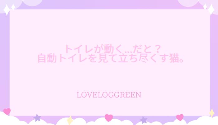 f:id:loveloggreen:20210916003824p:plain