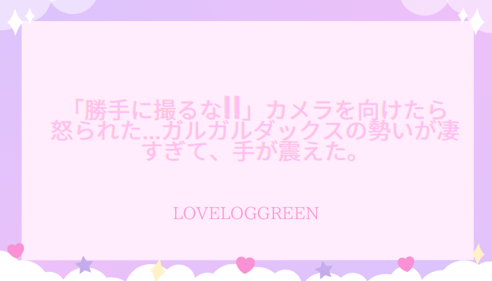 f:id:loveloggreen:20210916064950p:plain