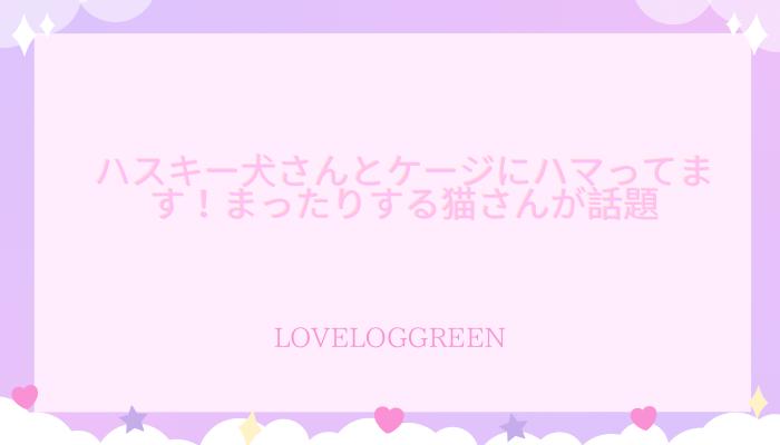 f:id:loveloggreen:20210916120609p:plain