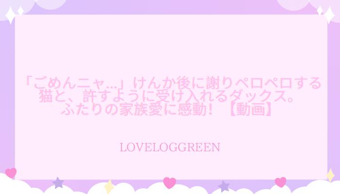 f:id:loveloggreen:20210919094626p:plain