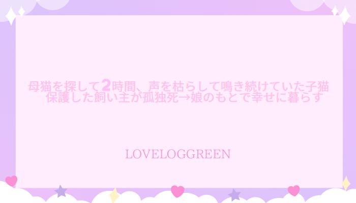 f:id:loveloggreen:20210922112245p:plain