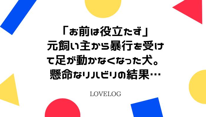 f:id:loveloggreen:20210925234536p:plain