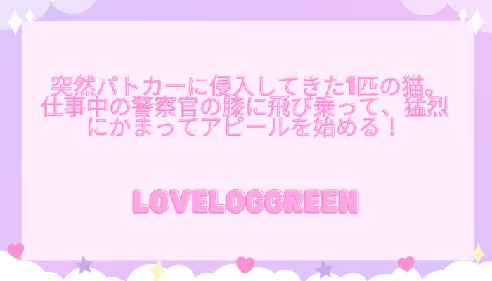 f:id:loveloggreen:20210927155649p:plain