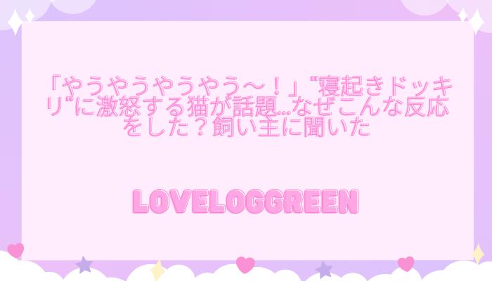 f:id:loveloggreen:20211005093210p:plain