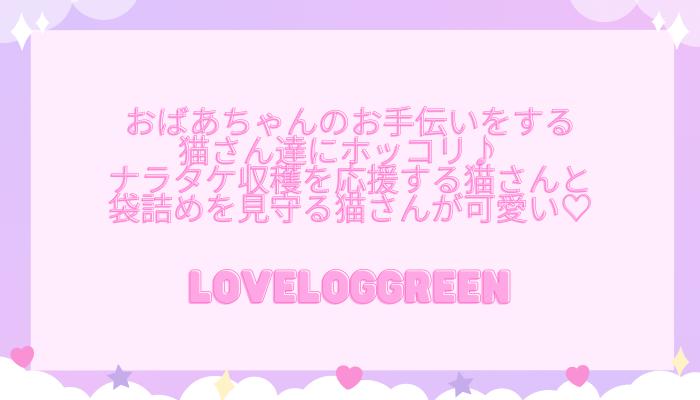 f:id:loveloggreen:20211012093729p:plain