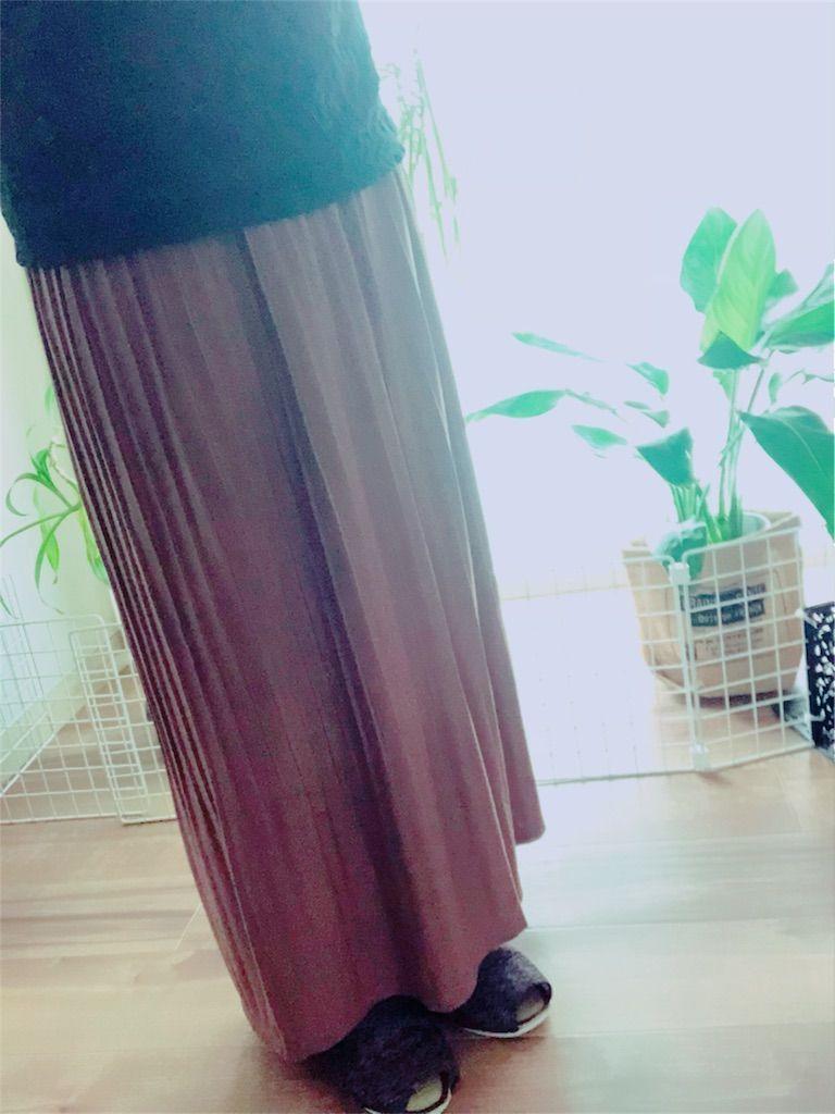 アースミュージック スカート