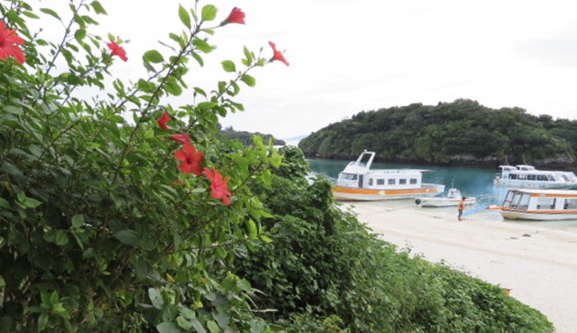 Kabira Bay with Hibiscus