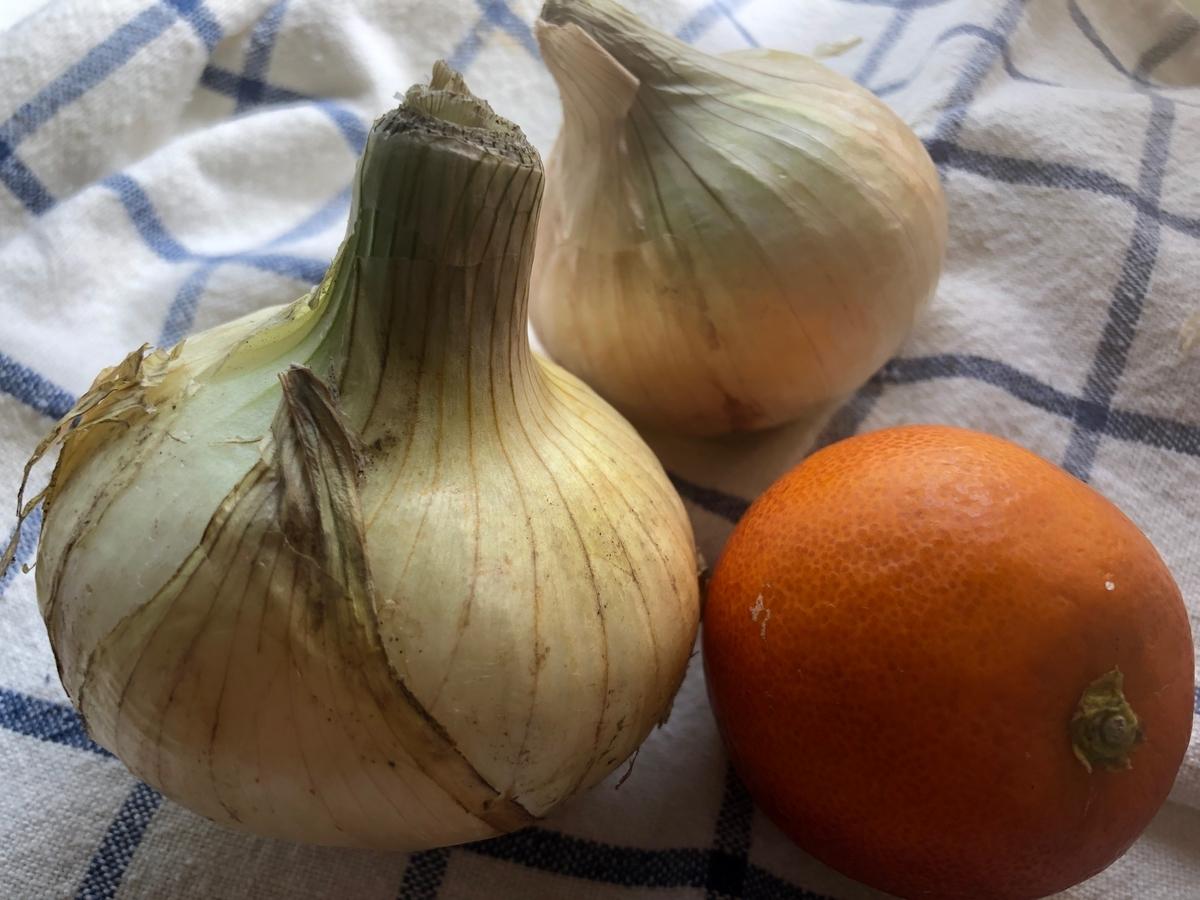 新玉ねぎとブラッドオレンジ / Spring onions and an blood orange