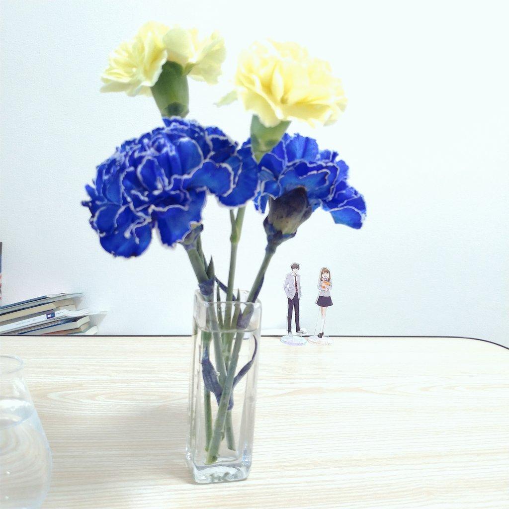 青色と黄色のカーネーションが花瓶にさしてある写真