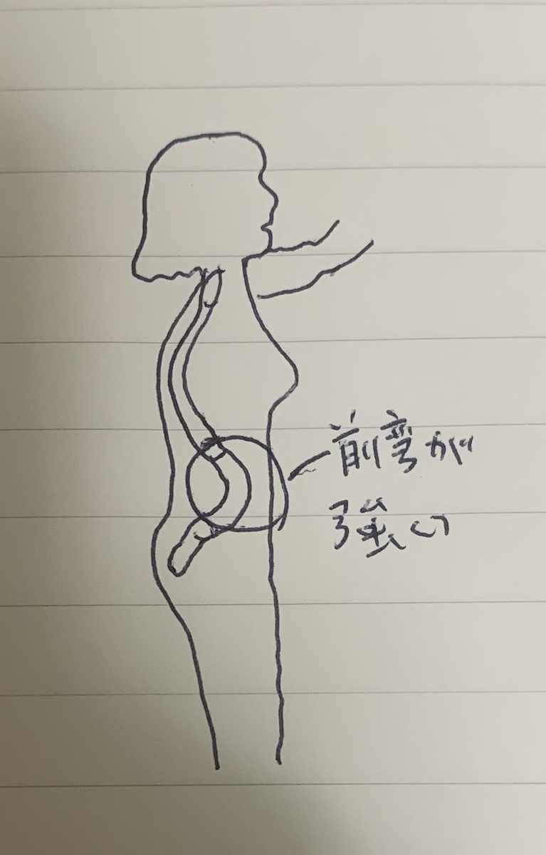 f:id:lowbackpain-masa:20191007222025j:plain